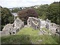 SX5894 : Okehampton Castle by john spivey