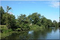 ST6768 : River  Avon  near Saltford by Martyn Pattison