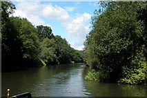 ST7265 : River  Avon  on the Western fringes of Bath by Martyn Pattison