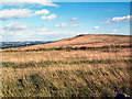 SE1543 : Reva Hill by David Spencer