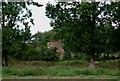 TQ6083 : Ruins At Ockendon Hall by Glyn Baker