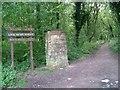 SK5245 : Sellers Wood by Mick Garratt