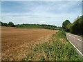TQ4060 : Jewels Wood, between New Addington and Biggin Hill by Philip Talmage