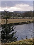 SE0063 : Linton Church and the River Wharfe by Dave Dunford