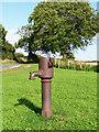 NY0839 : Village Pump, Allerby by Nigel Monckton