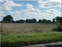 TG1301 : Brick Kiln Farm, Wymondham by Katy Walters