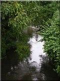 SJ9398 : River Tame from the Alma Bridge by Keith Williamson