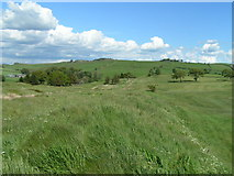 NY6565 : The Vallum, Haltwistle Golf Course by Dave Dunford