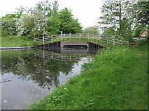 SJ2615 : Dropped road bridge on the Montgomery Canal at Arddleen by John Haynes