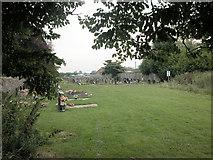 SJ3464 : Graveyard overspill by Dennis Turner