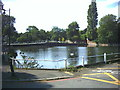 TQ2764 : Carshalton Ponds, High Street (A232) by Noel Foster