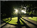 NS5467 : Victoria Park, Scotstoun, Glasgow by Chris Upson
