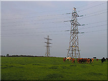 NY1039 : Pylons, Allerby and Oughterside by Nigel Monckton