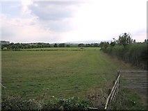 SP0147 : Fields near Wood Norton by Dave Bushell