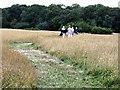 TQ2897 : Trent Country Park by Christine Matthews