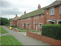 SD6110 : Council Houses by David Hignett