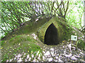 H2642 : Ice house at Castle Coole, Enniskillen by Kenneth  Allen