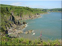 SX8848 : Combe Point by Dave Bushell