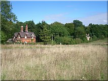 TQ1350 : Fox Cottages, Ranmore Common Road by Andrew Longton