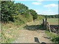 TQ4992 : Bridleway 227 by Claire Ward