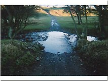 NU0122 : Ford, north of Ilderton by Andrew Smith