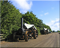 TQ6991 : Steam Traction Engines - Barleylands Farm by John Winfield