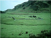 NR7204 : Remains of Chapel and cemetery, Sanda Island, Mull of Kintyre. by Johnny Durnan