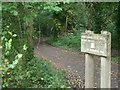TQ1262 : Esher Common cycle route by Andrew Longton