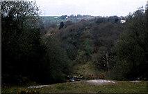SX4970 : Site of former Grenofen railway viaduct by Crispin Purdye