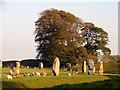 SU1069 : Avebury Stone Circle by Pam Brophy