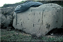 N9973 : Knowth: just one of the carved megaliths. by Dr Charles Nelson