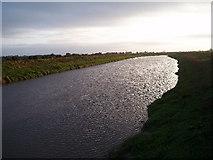 TF5902 : River Great Ouse. by Dr Charles Nelson