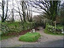 SX7379 : Jay's Grave - Dartmoor by Fiona Avis