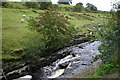 NY8738 : The River Wear near Ireshopeburn by Uncredited