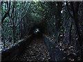 SE2039 : Dark lane near Rawdon by John Illingworth