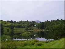 NY3404 : Loughrigg Tarn by EA Pugh