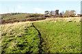 SX8661 : Footpath near Naptor by Crispin Purdye