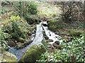 SW4426 : Tinner leat in Trevelloe woods by John Negus