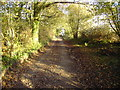SU4659 : Byway near Whitway by Nygel Gardner