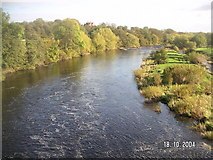NZ2115 : The River Tees looking east from the bridge at Piercebridge by Dennis Troughton