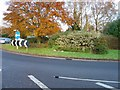 TQ2535 : Cheals Roundabout - showing position of topiary sign. by Pete Chapman