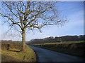 NX9913 : Lone tree road. by John Holmes