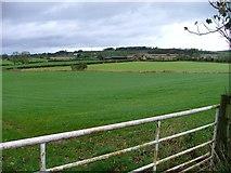 NZ2320 : Across the Fields to Walworth Moor Farm by Mick Garratt