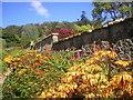 NJ5329 : Leith Hall Gardens by Richard Slessor