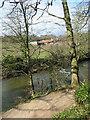 NZ2379 : Plessey Mill Farm, Northumberland by Chris Tweedy