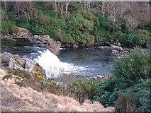 L8964 : Aasleagh Falls, Erriff River by Robert Bone