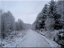 SJ1661 : The 'blue' path by Dot Potter