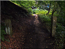 SD9926 : Crow Nest Road (footpath), Hebden Bridge by Phil Champion