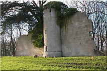 SO8646 : Pirton Castle, Croome by Philip Halling
