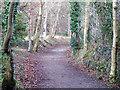 SH5869 : Lon Ogwen Cycle track by Nigel Williams